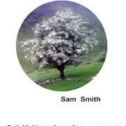 A New Acmeism - Sam Smith, erbacce press