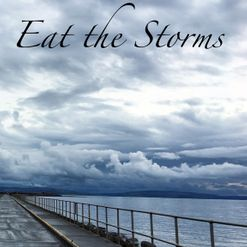 Damien Donnelly - Eat the Storms, Hedgehog Press
