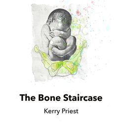 Kerry Priest - The Bone Staircase, Live Canon Press