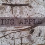 Singing Apple Press